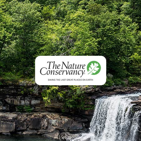 image of the The Nature Conservancy logo